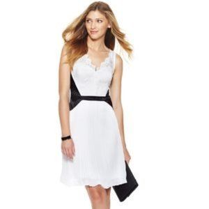 MAX AND CLEO Tricia Black/White Pleated Lace Dress